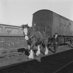 The Saving of the Railway Horse